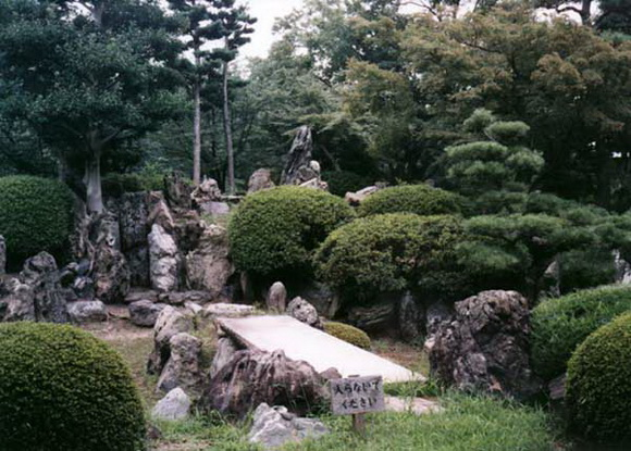 landscaping-138