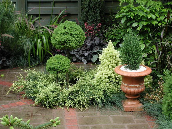 landscaping-170