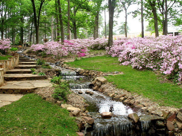 landscaping-175