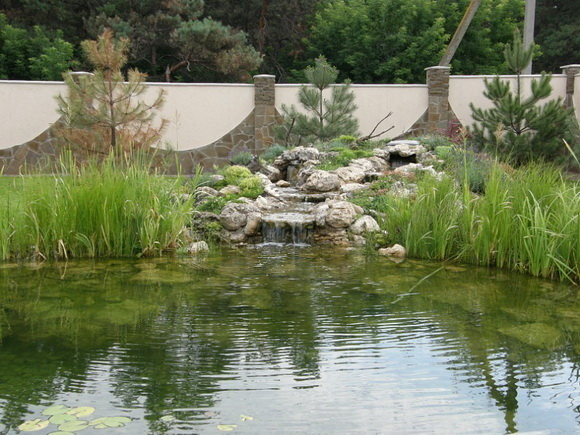 landscaping-189
