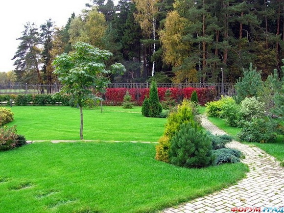 landscaping-190