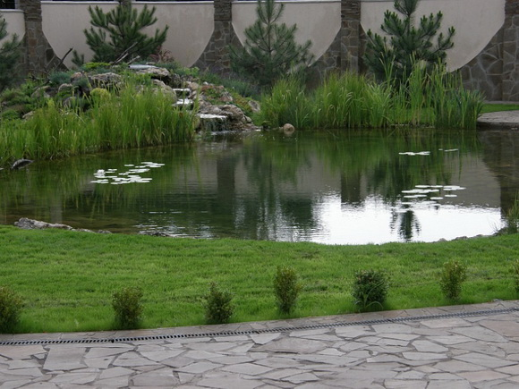 landscaping-195