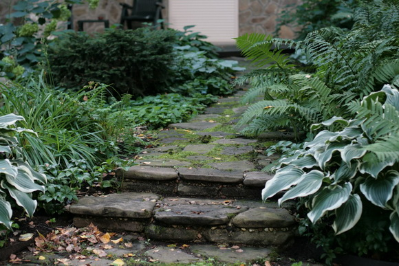 landscaping-205