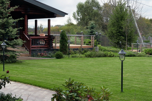 landscaping-206