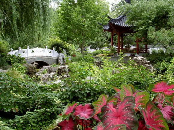 landscaping-48