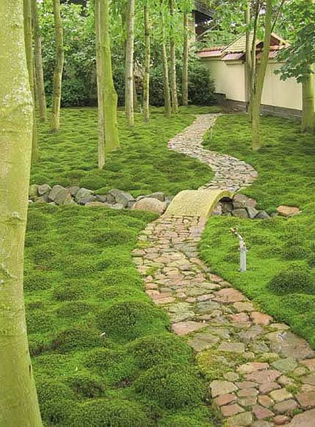 landscaping-83